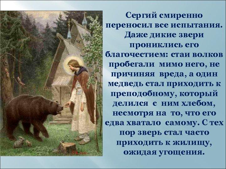 Сергий смиренно переносил все испытания. Даже дикие звери прониклись его благочестием: стаи волков пробегали