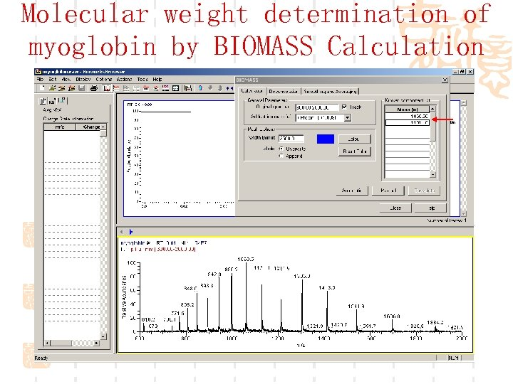 Molecular weight determination of myoglobin by BIOMASS Calculation