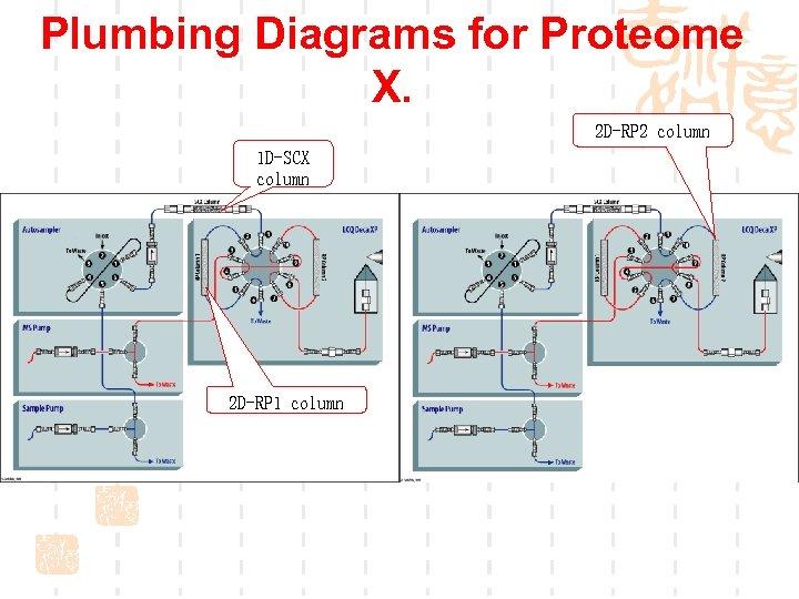 Plumbing Diagrams for Proteome X. 2 D-RP 2 column 1 D-SCX column 2 D-RP