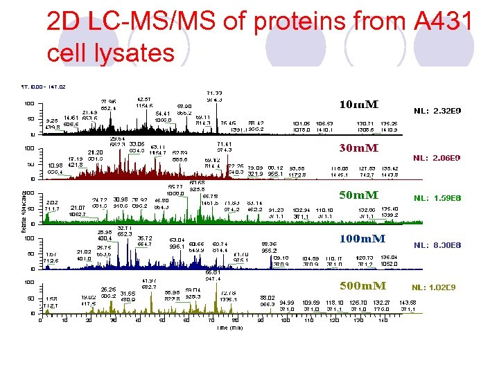 2 D LC-MS/MS of proteins from A 431 cell lysates