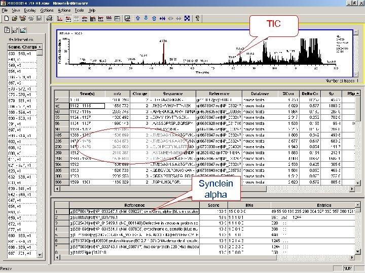 TIC Synclein alpha