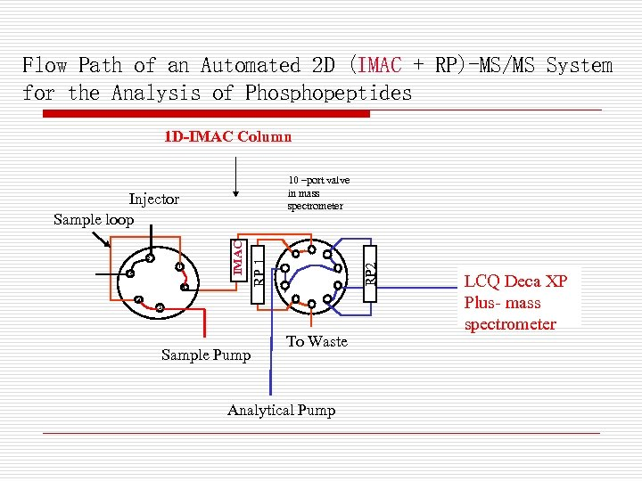 Flow Path of an Automated 2 D (IMAC + RP)-MS/MS System for the Analysis