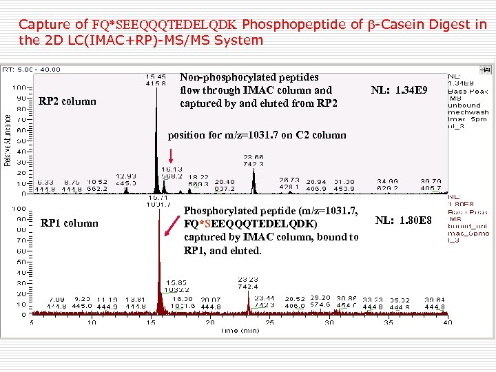 Capture of FQ*SEEQQQTEDELQDK Phosphopeptide of -Casein Digest in the 2 D LC(IMAC+RP)-MS/MS System RP