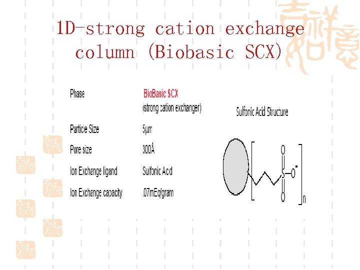 1 D-strong cation exchange column (Biobasic SCX)