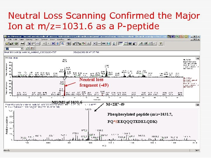 Neutral Loss Scanning Confirmed the Major Ion at m/z=1031. 6 as a P-peptide Neutral