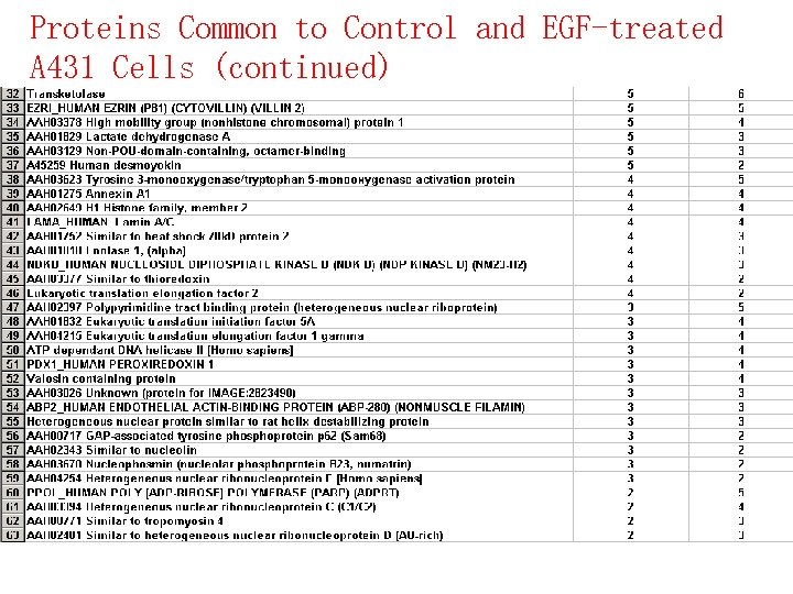 Proteins Common to Control and EGF-treated A 431 Cells (continued)