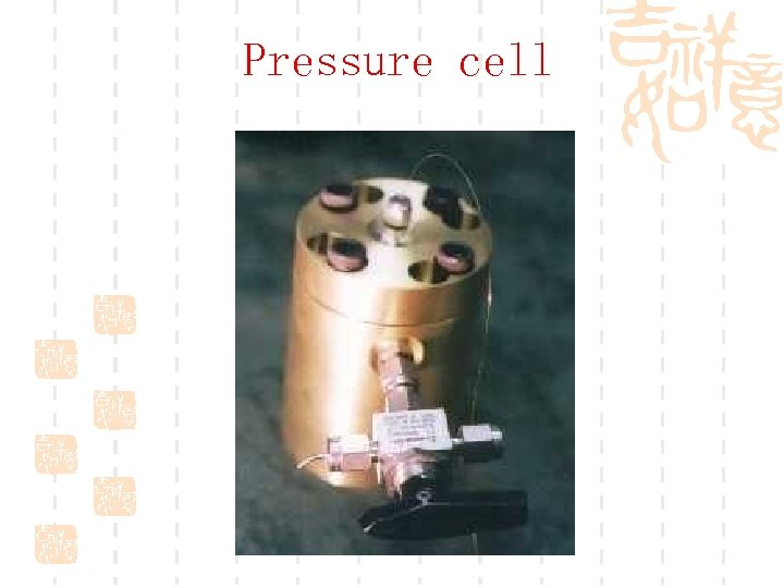 Pressure cell