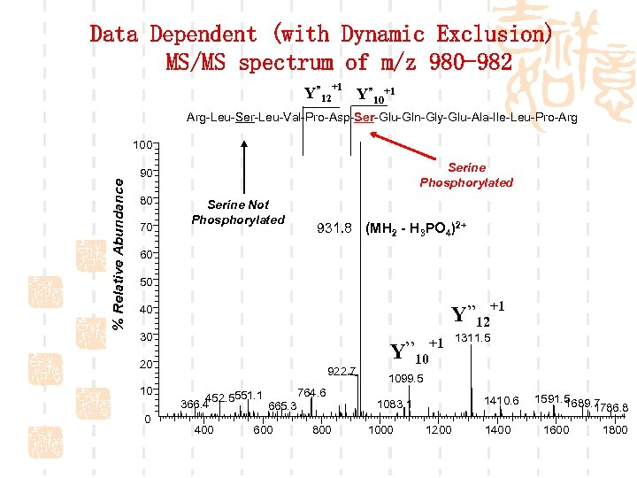 """Data Dependent (with Dynamic Exclusion) MS/MS spectrum of m/z 980 -982 Y"""" 12+1 Y"""""""