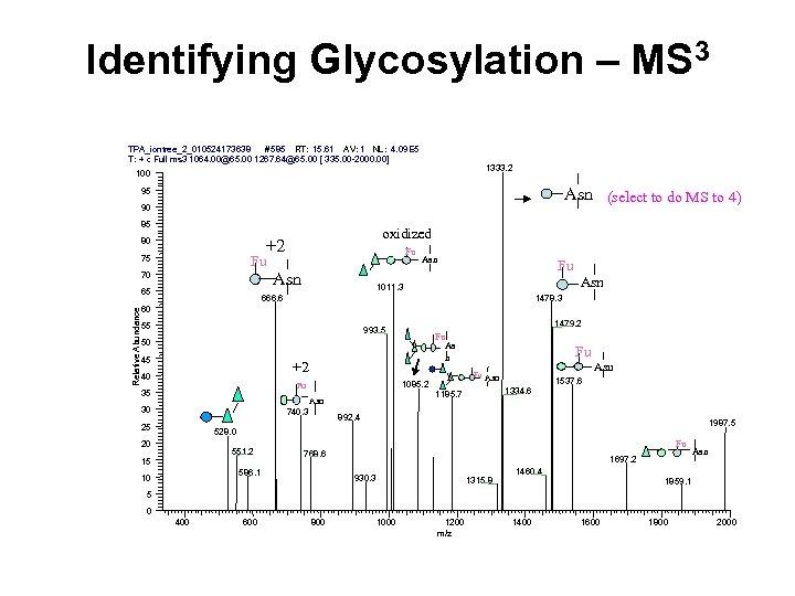 Identifying Glycosylation – MS 3 TPA_iontree_2_010524173638 #585 RT: 15. 61 AV: 1 NL: 4.