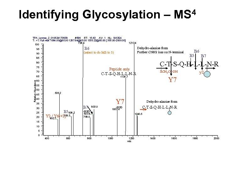Identifying Glycosylation – MS 4 # 586 RT: 15. 63 AV: 1 NL: 8.