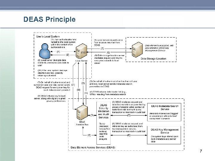 DEAS Principle 7