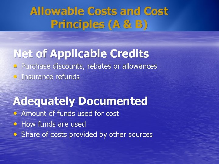Allowable Costs and Cost Principles (A & B) Net of Applicable Credits • Purchase