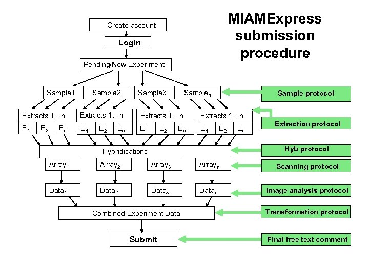 MIAMExpress submission procedure Create account Login Pending/New Experiment Sample 1 Extracts 1…n E 1