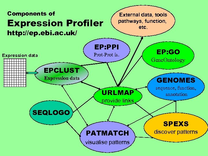 Components of Expression Profiler http: //ep. ebi. ac. uk/ External data, tools pathways, function,