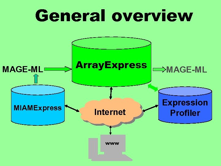 General overview MAGE-ML MIAMExpress Array. Express MAGE-ML Internet Expression Profiler www