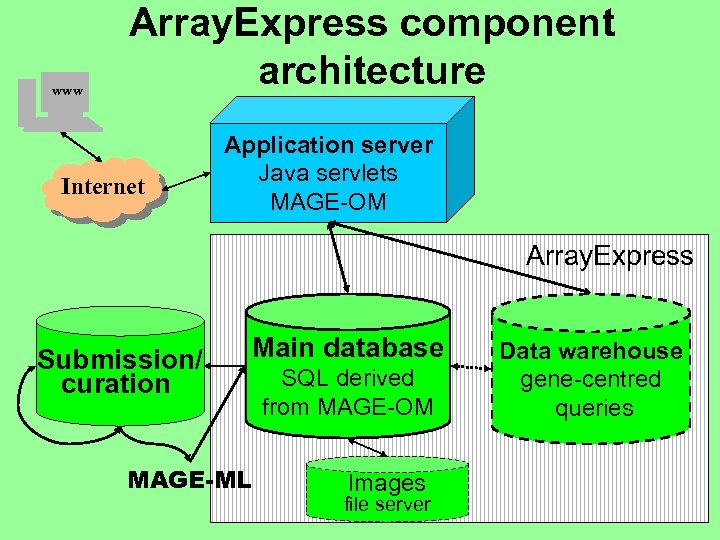 www Array. Express component architecture Internet Application server Java servlets MAGE-OM Array. Express Submission/