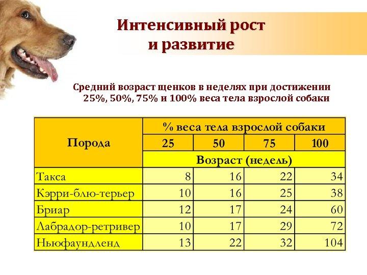 Интенсивный рост и развитие Средний возраст щенков в неделях при достижении 25%, 50%, 75%