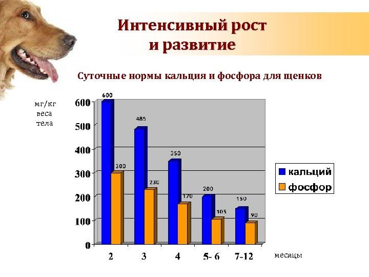 Интенсивный рост и развитие Суточные нормы кальция и фосфора для щенков мг/кг веса тела