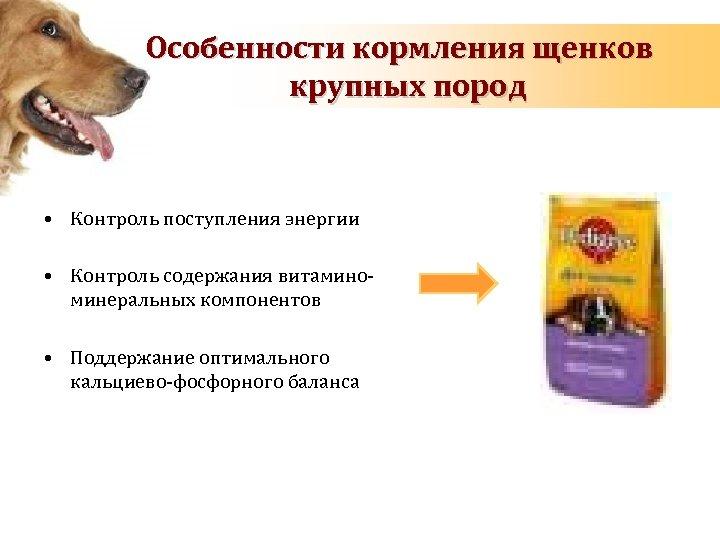 Особенности кормления щенков крупных пород • Контроль поступления энергии • Контроль содержания витаминоминеральных компонентов