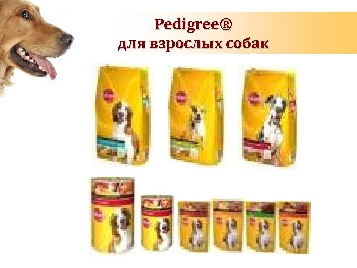 Pedigree® для взрослых собак