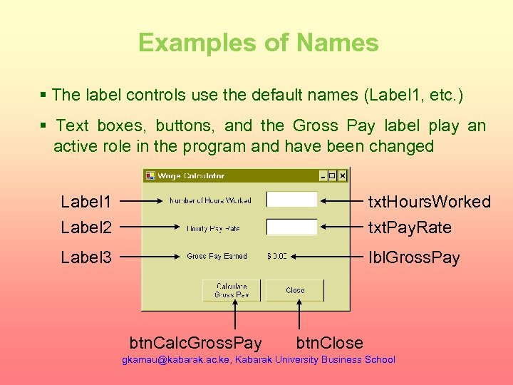 Examples of Names § The label controls use the default names (Label 1, etc.