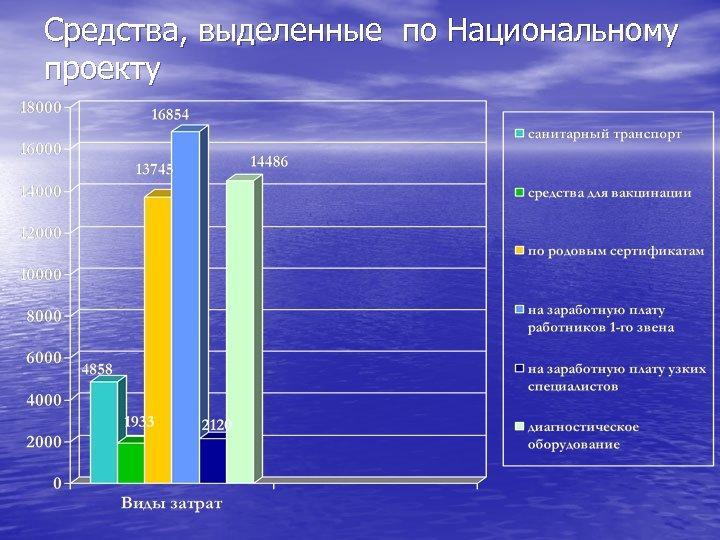 Средства, выделенные по Национальному проекту