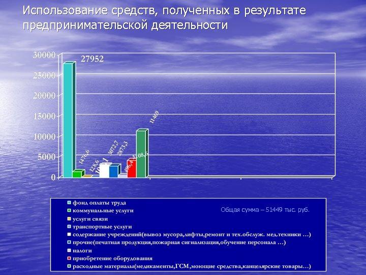 Использование средств, полученных в результате предпринимательской деятельности Общая сумма – 51449 тыс. руб.