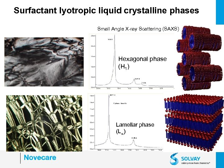 Surfactant lyotropic liquid crystalline phases Small Angle X-ray Scattering (SAXS) Hexagonal phase (H 1)