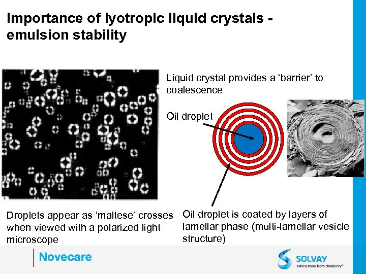 Importance of lyotropic liquid crystals emulsion stability Liquid crystal provides a 'barrier' to coalescence