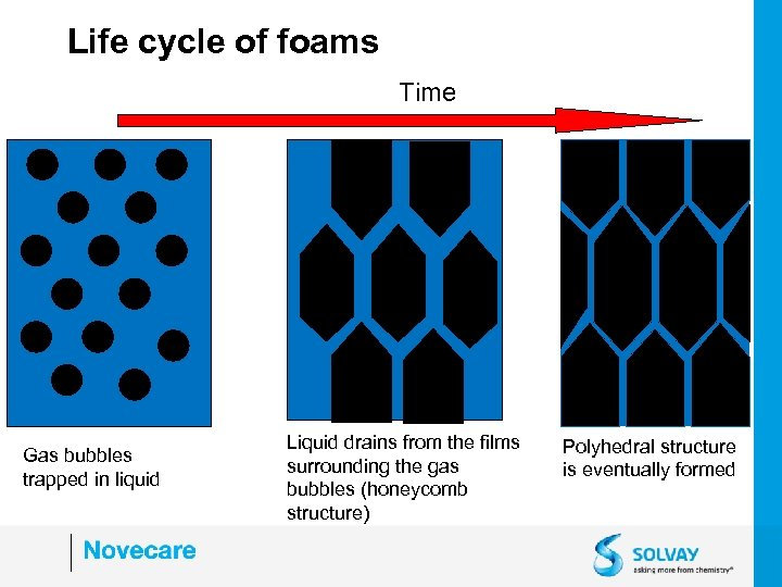 Life cycle of foams Time Gas bubbles trapped in liquid Liquid drains from the