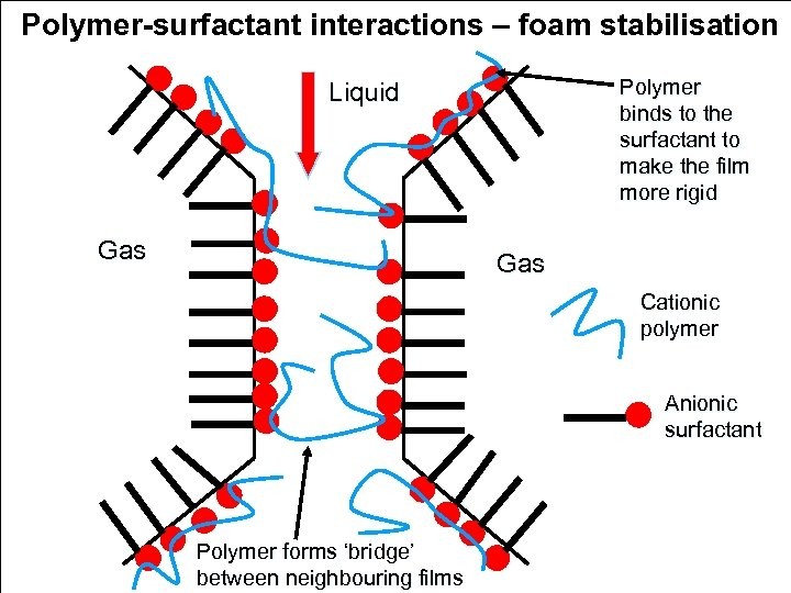 Polymer-surfactant interactions – foam stabilisation Polymer binds to the surfactant to make the film