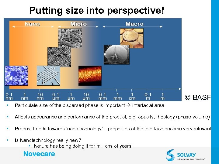 Putting size into perspective! © BASF • Particulate size of the dispersed phase is