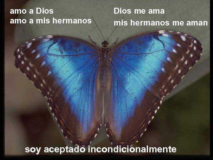 amo a Dios amo a mis hermanos Dios me ama mis hermanos me aman