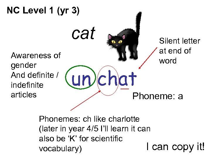 NC Level 1 (yr 3) cat Awareness of gender And definite / indefinite articles