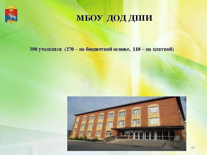 МБОУ ДОД ДШИ 380 учащихся (270 – на бюджетной основе, 110 – на платной)
