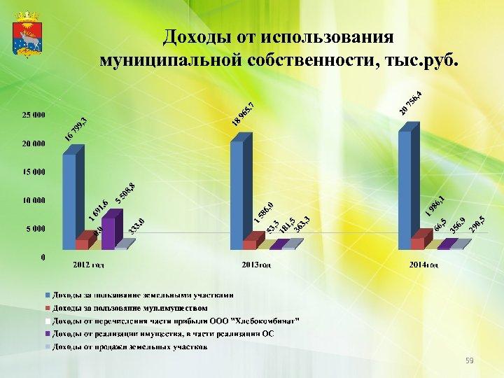 Доходы от использования муниципальной собственности, тыс. руб. 59