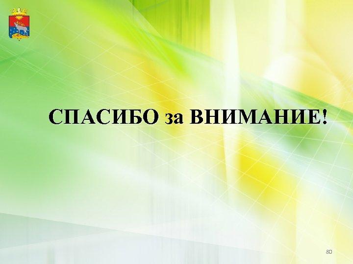СПАСИБО за ВНИМАНИЕ! 80