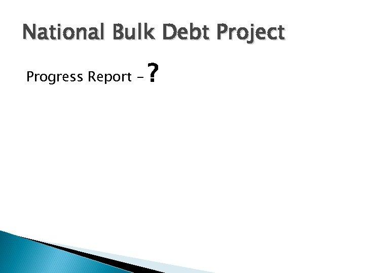 National Bulk Debt Project Progress Report - ?