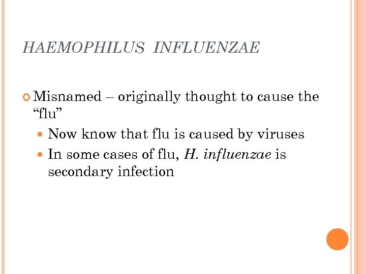 "HAEMOPHILUS INFLUENZAE Misnamed – originally thought to cause the ""flu"" Now know that flu"