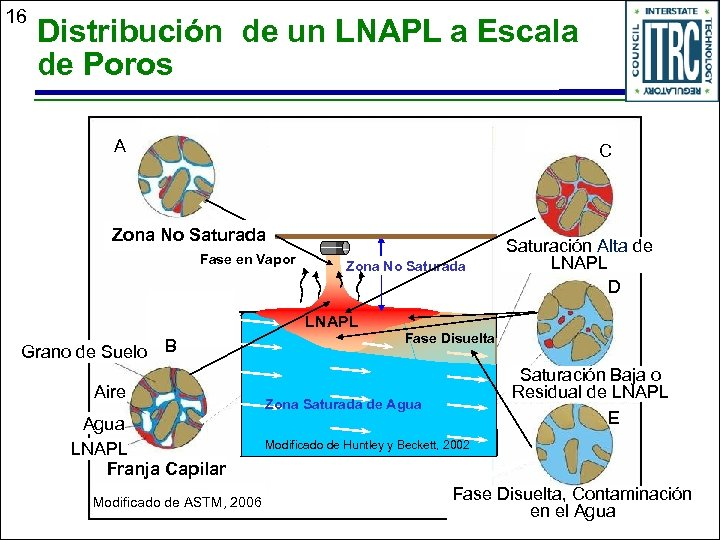 16 Distribución de un LNAPL a Escala de Poros A C Zona No Saturada
