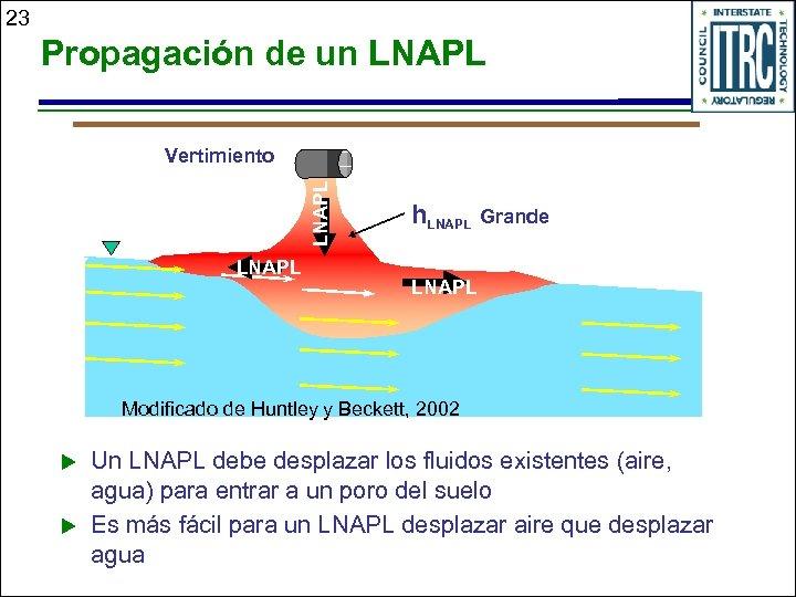 23 Propagación de un LNAPL Vertimiento LNAPL h. LNAPL Grande LNAPL Modificado de Huntley