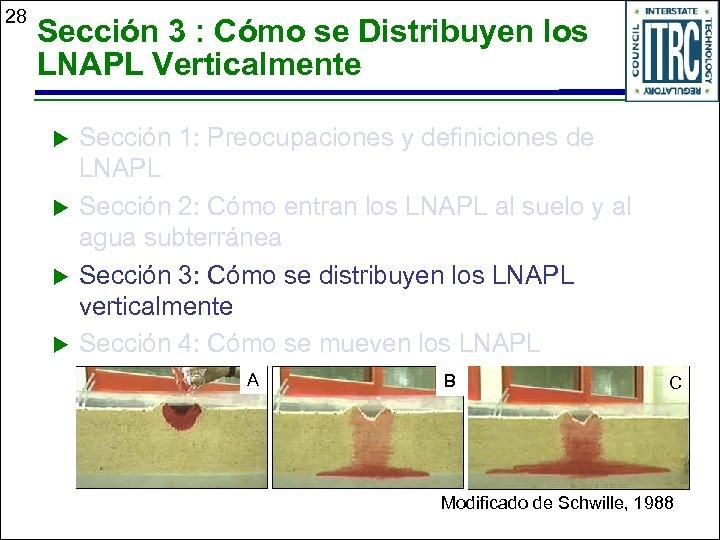 28 Sección 3 : Cómo se Distribuyen los LNAPL Verticalmente u u Sección 1: