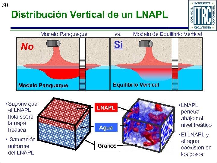 30 Distribución Vertical de un LNAPL Modelo Panqueque vs. Si No Equilibrio Vertical Modelo