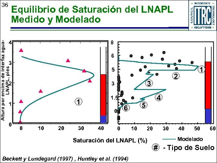 36 Equilibrio de Saturación del LNAPL Medido y Modelado 8 Altura por encima de