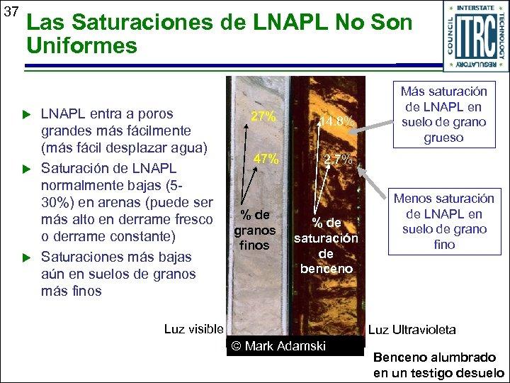 37 Las Saturaciones de LNAPL No Son Uniformes u u u LNAPL entra a