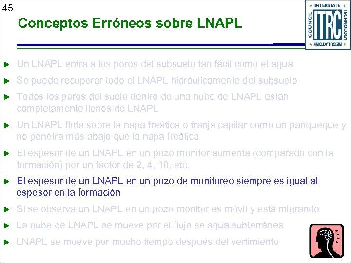 45 Conceptos Erróneos sobre LNAPL u Un LNAPL entra a los poros del subsuelo