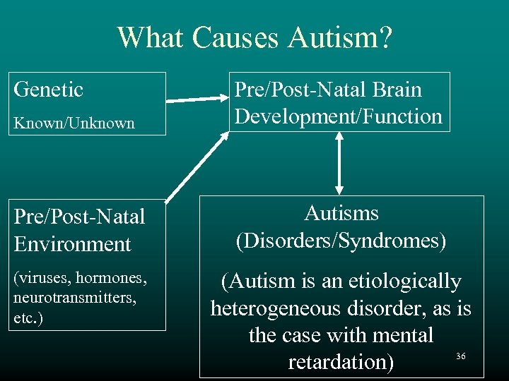 What Causes Autism? Genetic Known/Unknown Pre/Post-Natal Brain Development/Function Pre/Post-Natal Environment Autisms (Disorders/Syndromes) (viruses, hormones,