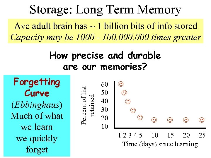 Storage: Long Term Memory Ave adult brain has ~ 1 billion bits of info