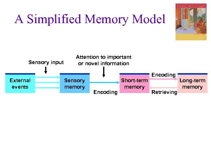 A Simplified Memory Model Sensory input External events Attention to important or novel information