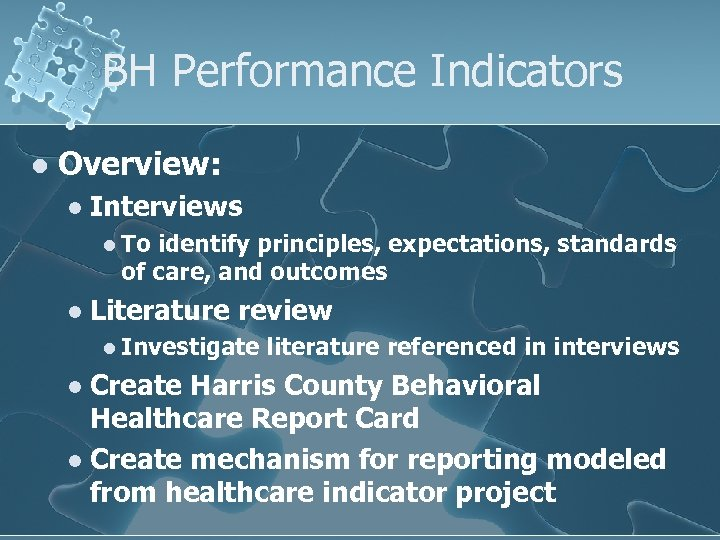 BH Performance Indicators l Overview: l Interviews l To identify principles, expectations, standards of